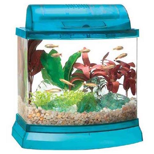 Mini Bow 2.5-Gallon Aquarium Kit