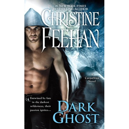 Dark Ghost (Best Ghost Novels For Adults)
