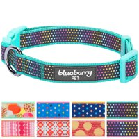 """Blueberry Pet Magic Rainbow Color Reflective Polka Dot Holo Dog Collar in Mint Blue, Large, Neck 18""""-26"""""""