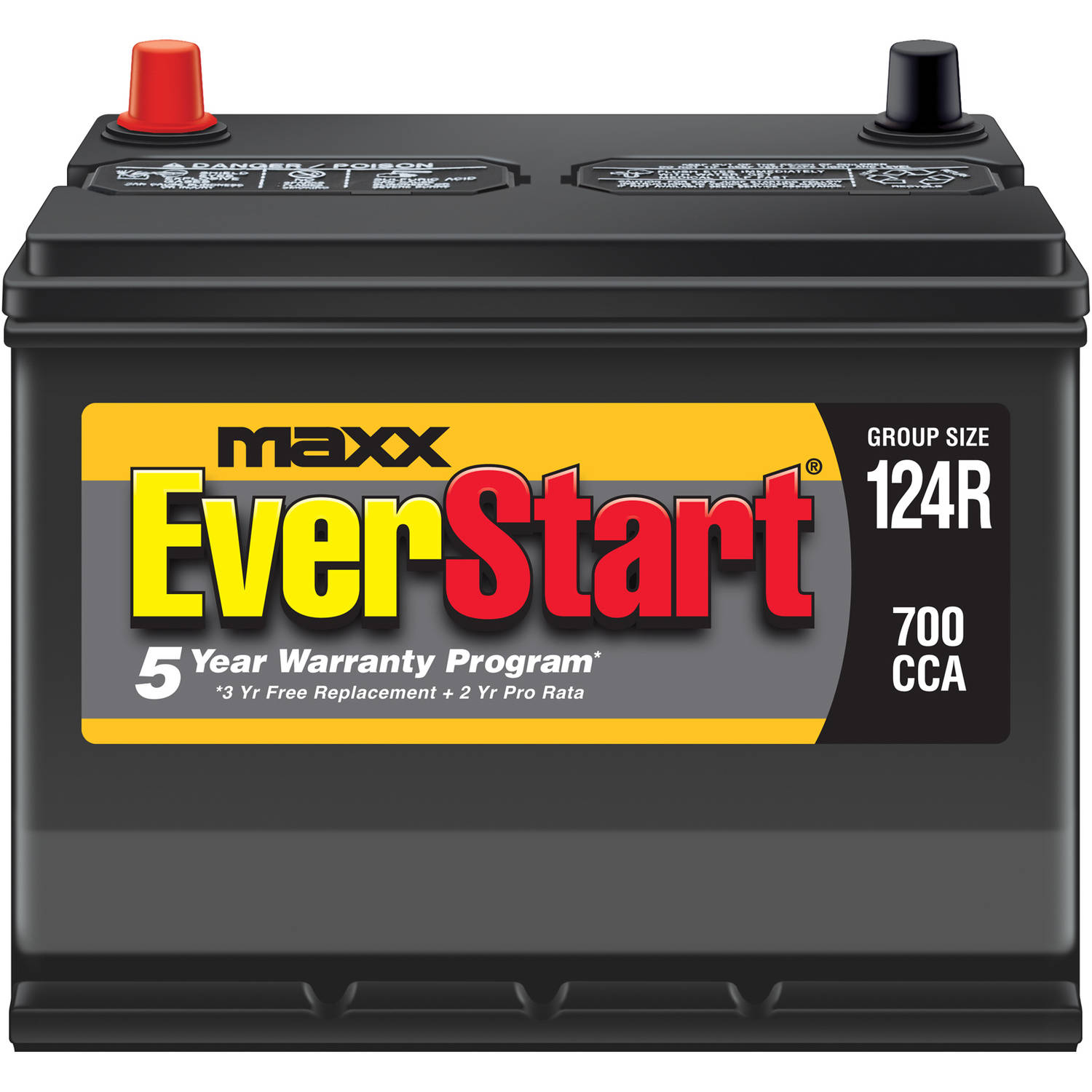 EverStart Maxx Lead Acid Automotive Battery, Group 124R