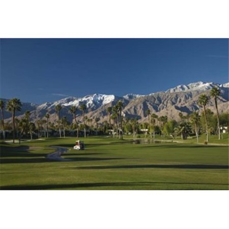 Panoramic Images PPI124789 Palm trees in a golf course  Desert Princess Country Club  Palm Springs  Riverside County  California  USA Poster Print by Panoramic Images - -