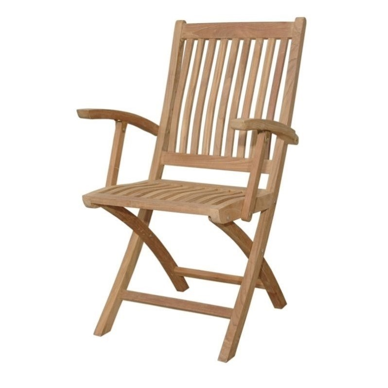 Anderson Teak Tropico Folding Patio Dining Chair in Natural (Set of 2)