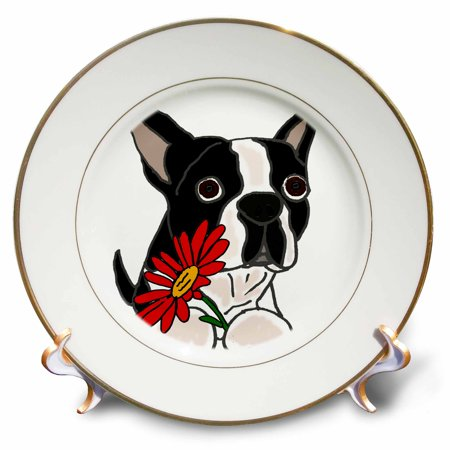 3dRose Funny Cute Boston Terrier Puppy Dog with Red Daisy Flower - Porcelain Plate, 8-inch