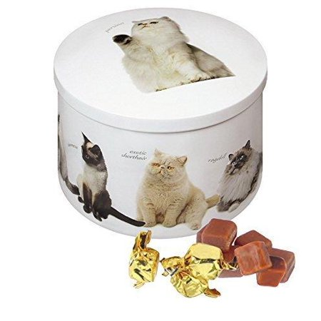 Gardiners Of Scotland Cat Tin filled with Luxury Traditional Scottish Vanilla Fudge, 7 Ounce