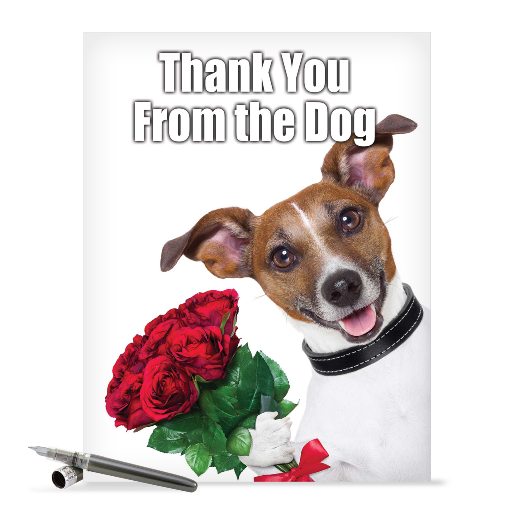 "J3614 Jumbo Hilarious Thank You Greeting Card: 'Thank You from the Dog Thank You' with Envelope (Jumbo Size: 8.5"" x 11"")"