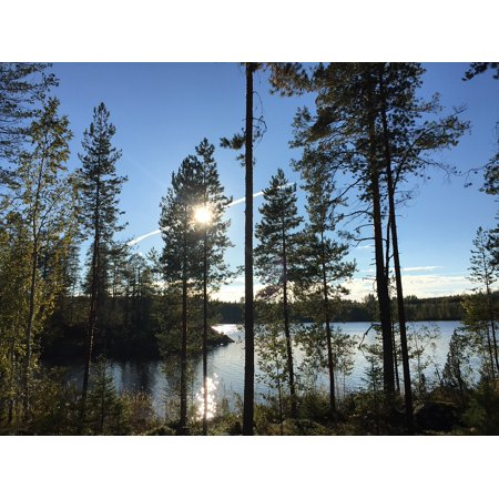 Canvas Print Mirror Finland Tree Blue More View Water Nature Stretched Canvas 10 x