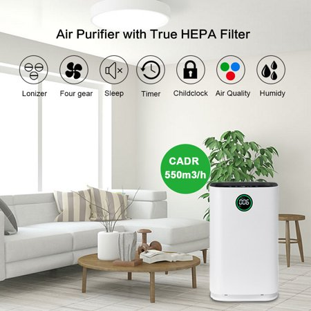 HEPA Air Purifier, AUGIENB Humidifier with 6 Stage Ture HEPA Filter Ionic for Smoke Odor Dust Remover Anti Allergies PM2.5,4-Speed Control (Hepa Filter Humidifier)