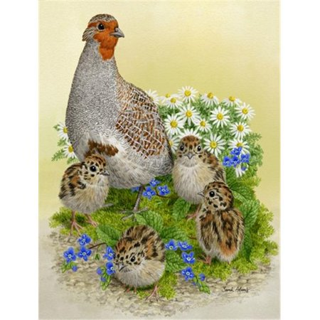 Carolines Treasures ASA2162GF Partridge And Chicks Flag Garden Size - image 1 of 1