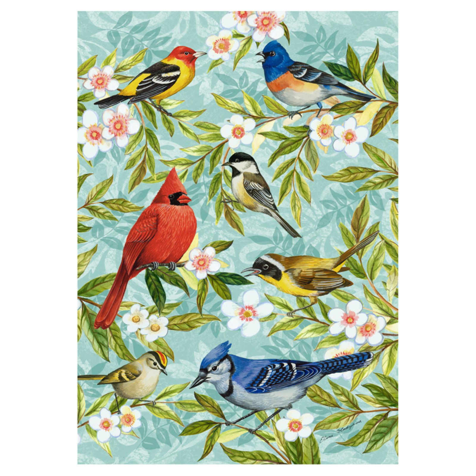 Toland Home Garden Bird Collage Flag