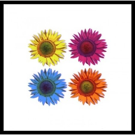 Pop Flowers - Andy Warhol Laminated & Framed Poster (16 x 16)