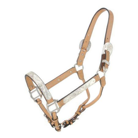 Royal King Horse Silver Bar Show Halter