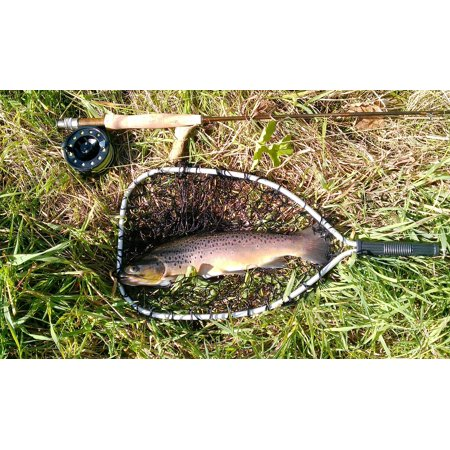 Fly Fishing Trout Prints - Canvas Print Fishing Rod Fishing Trout Nature Fly Fishing Fish Stretched Canvas 32 x 24