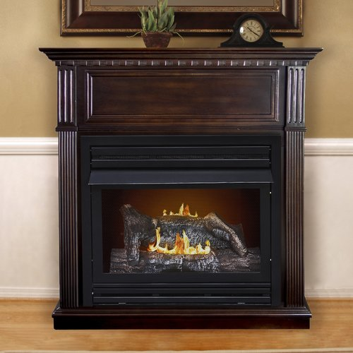 Darby Home Co Pauline Dual Fuel Vent Free Wall Mount Gas ...