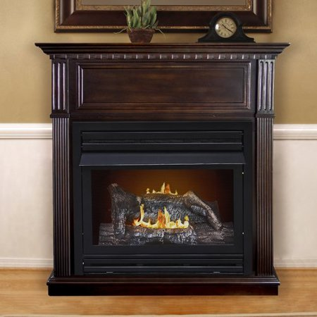 Darby Home Co Pauline Dual Fuel Vent Free Wall Mount Gas Fireplace