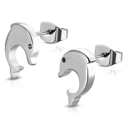 Stainless Steel Tiny Spiral Dolphin Button Stud Post Earrings