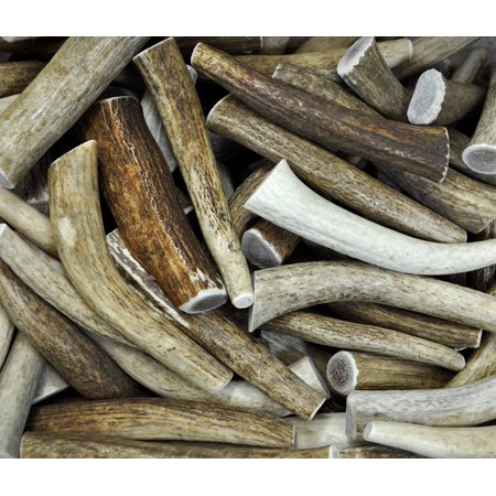Downtown Pet Supplys, Antler Variety Value Pack, Deer Antler Elk Chews, All Natural Premium Long Lasting Dog Treat Chew Sticks (From the USA!) - Antlers By The Pound
