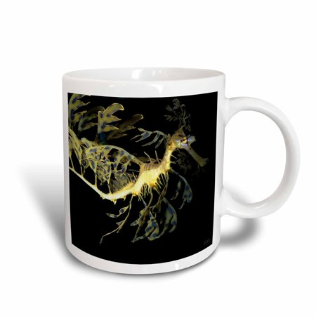 3Drose Leafy Sea Dragon Seahorse  Phycodurus Eques   Ceramic Mug  11 Ounce