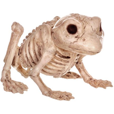 Skeleton Halloween Clipart (Frog Skeleton Halloween)