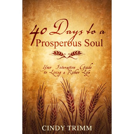 40 Days to a Prosperous Soul : Your Interactive Guide to Living a Richer Life