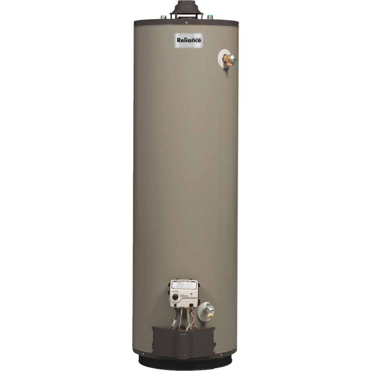 Reliance 40gal Self-Cleaning Liquid Propane (LP) Gas Wate...