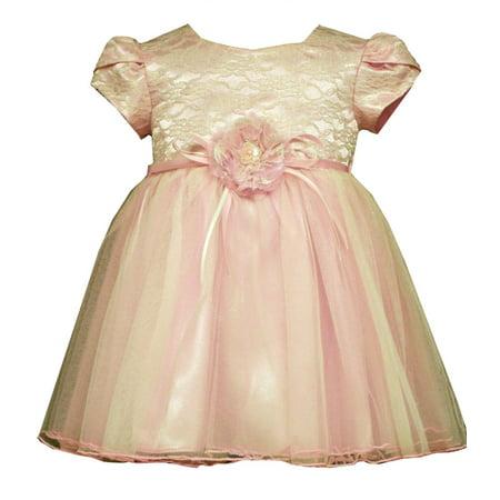 Bonnie Jean Little Girls Pink Lace Organza Valentines Day Toddler Dress 3T