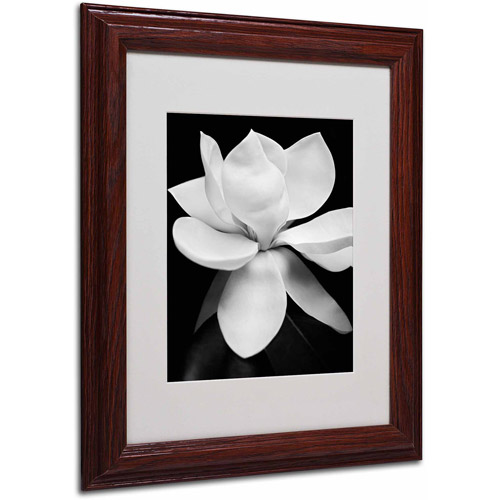 "Trademark Fine Art ""Magnolia"" Framed Canvas Art by Michael Harrison"