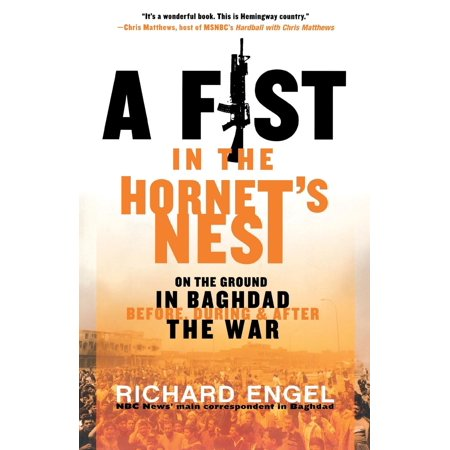 A Fist in the Hornet's Nest : On the Ground in Baghdad Before, During & After the