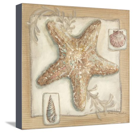 Sandy Starfish Stretched Canvas Print Wall Art By Kate McRostie - Starfish Wall Art