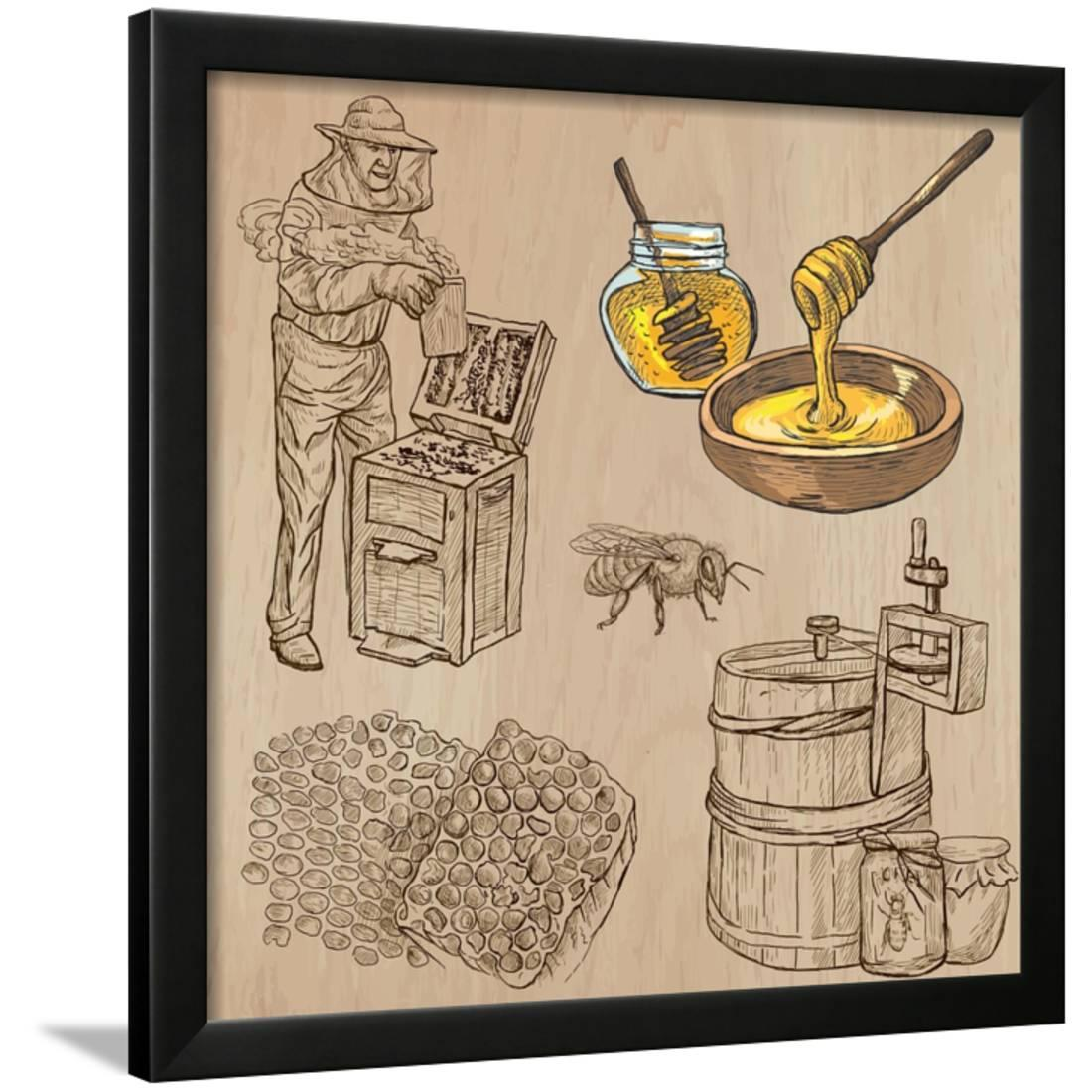 Bees, Beekeeping, and Honey Framed Print Wall Art By KUCO