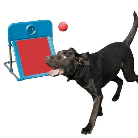 Rosewood Pet Agility Flyball Dog Training (Dog Agility Chute)