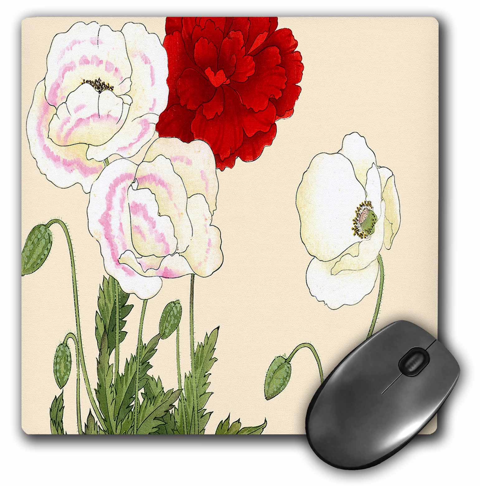3dRose Poppy, Large Showy Flowers in Red and White with Touches of Pink, Mouse Pad, 8 by 8 inches