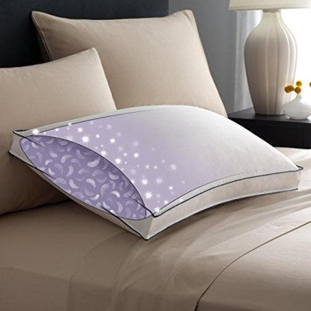Pacific Coast Double Downaround Firm Pillow 300 Thread Count 550 Fill Down Resilia Feathers Write A Review