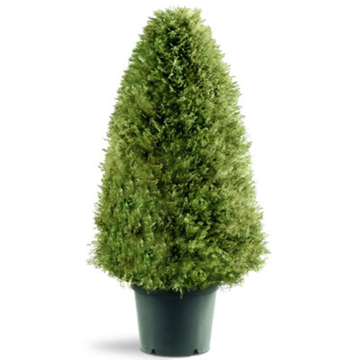"30"" Potted Artificial Rounded Triangular Juniper Topiary Tree"