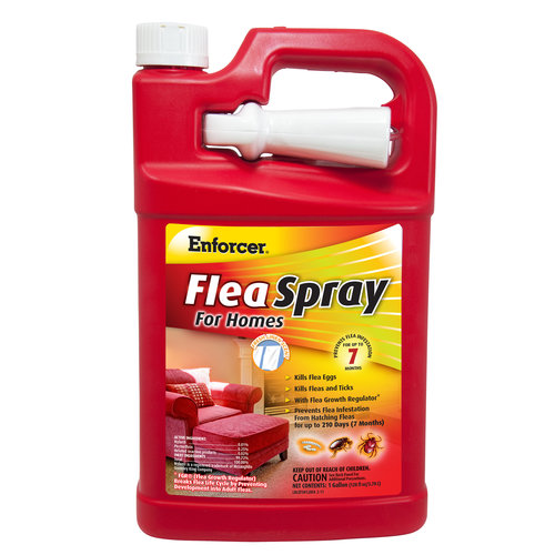 Enforcer Flea Spray for Homes, 1 gal, Ready-To-Use