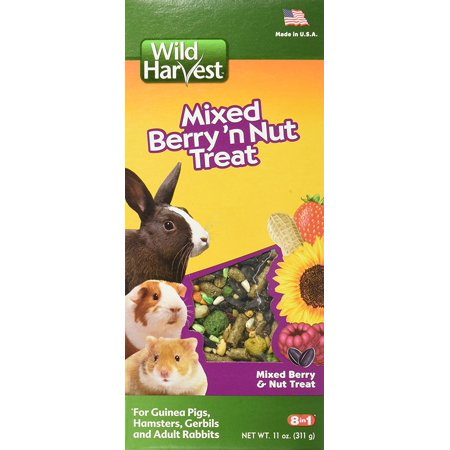 (2 Pack) Wild Harvest Wild Berry and Nut Treat for Small Animals