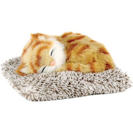 Mini Orange Tabby Perfect Petzzz Soft Kitty Takes Cat-Naps In It's Tiny - Orange Kitty