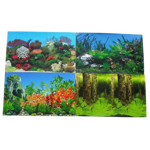Aqua Culture: Aquarium Two-Sided Background, 1 Pk