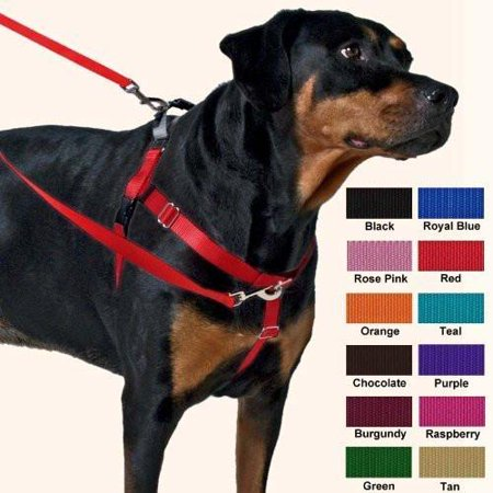 Freedom No-Pull Dog Harness Training Package - 1
