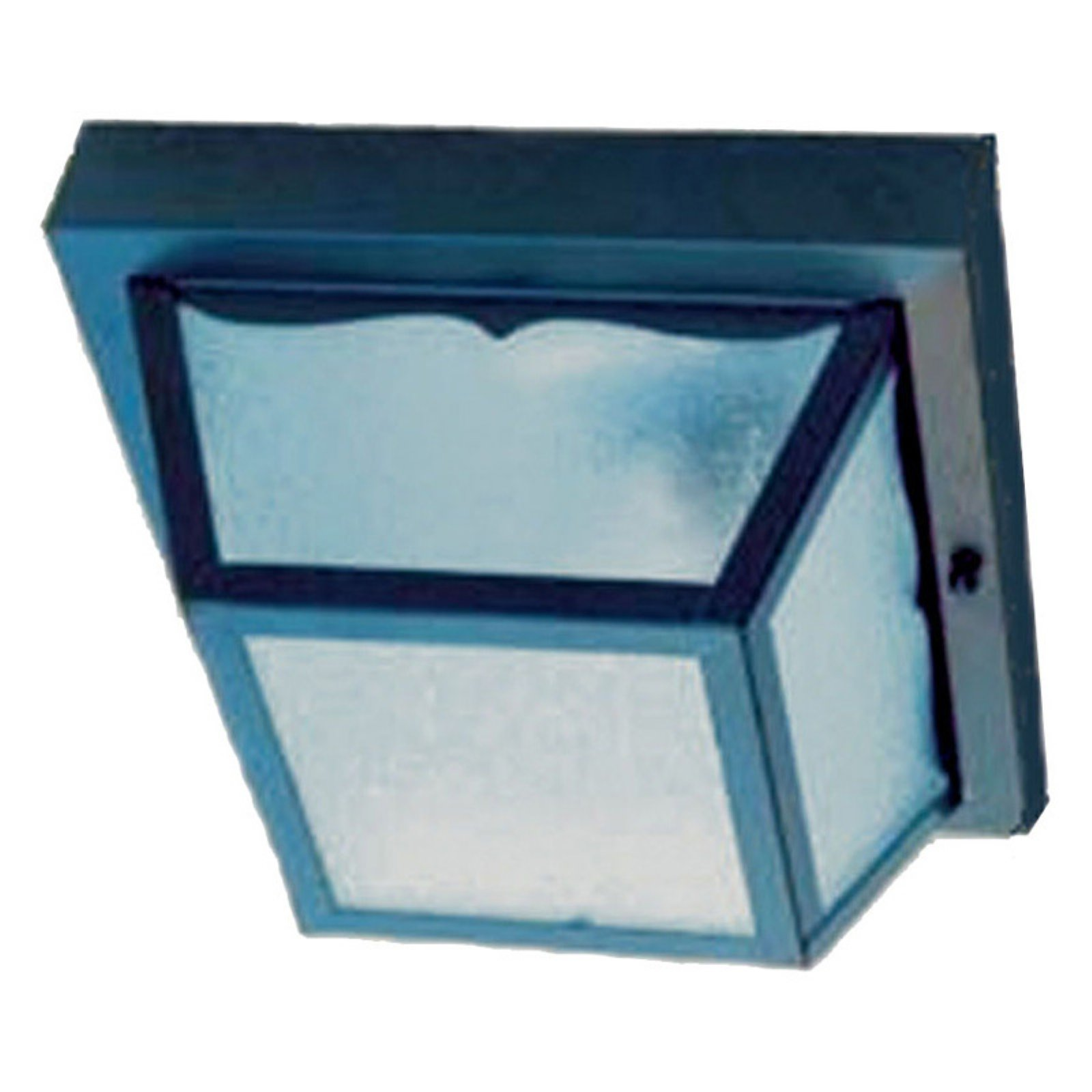Acclaim Lighting Builders Choice Outdoor Ceiling Mount Light Fixture by Acclaim Lighting