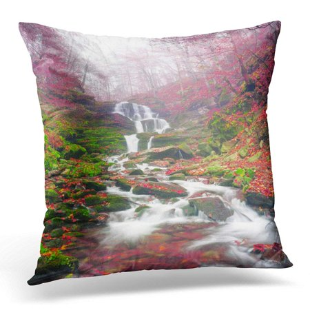 BSDHOME Famous Alpine Beautiful Waterfall Borzhava Under The Mountain Village Pylypets Ski Resort Cold Net Rough Pillow Case Pillow Cover 20x20 inch - image 1 of 1