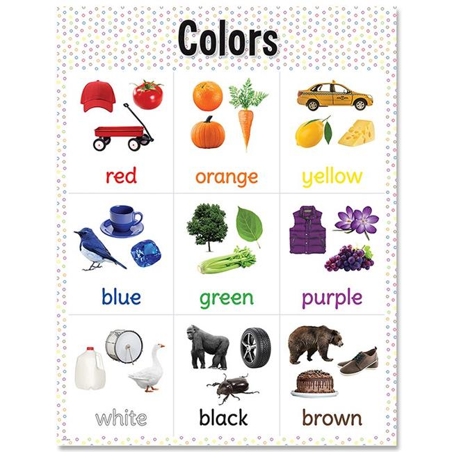 Creative Teaching Press CTP8611 17 x 22 in. Colors Chart