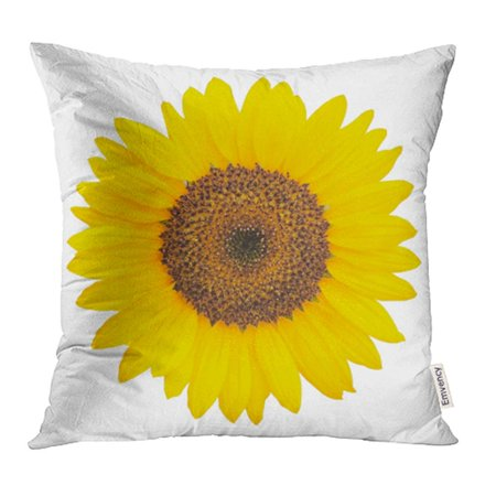 YWOTA Yellow Clipping Sunflower White Path Color Common Daisy Flower Head Leaf Pillow Cases Cushion Cover 18x18 inch ()