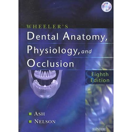 Wheelers Dental Anatomy Physiology And Occlusion By Major M Ash