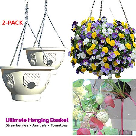 Ultimate Hanging Baskets - Strawberry, Tomato, Flower, and Herb Outdoor Planters - Use Garden Pots For Growing Plants Outside On A Deck, Fence, or Balcony (2, Stone) (Henry Stone)