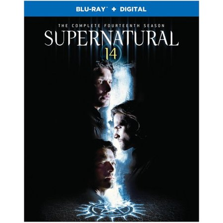Supernatural: The Complete Fourteenth Season (Blu-ray) (Supernatural Season 1 Episode 9)