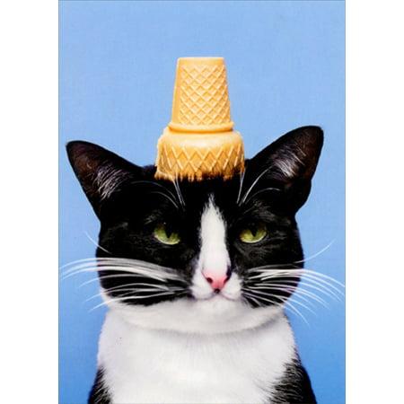 Avanti Press Cat With Ice Cream Cone Funny Birthday Card