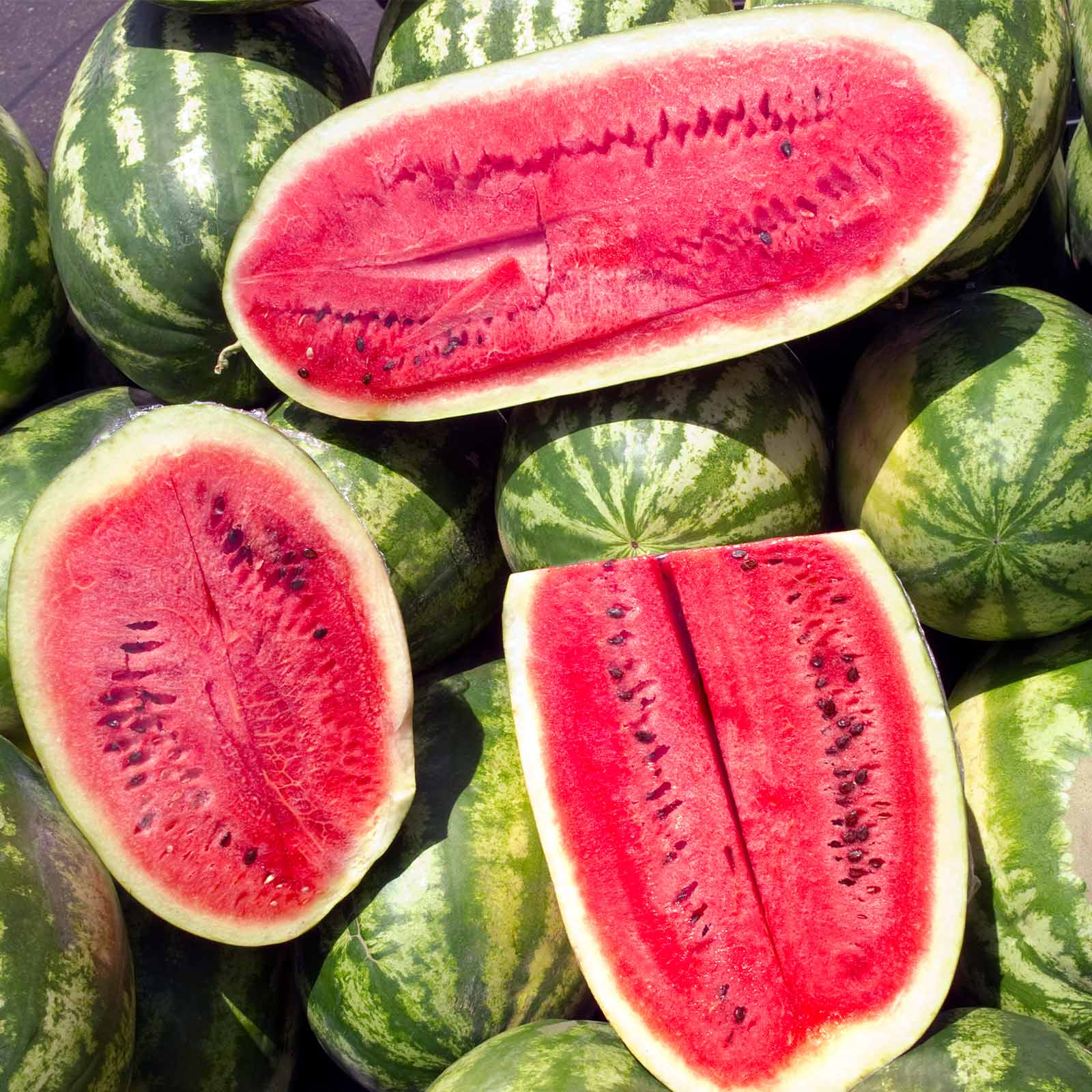 Watermelon Garden Seeds - Sugar Beauty Hybrid - 100 Seeds - Non-GMO, Vegetable Gardening Fruit Melon Seeds