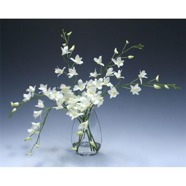 Distinctive Designs 15409B Waterlook White Dendrobium Orchid in Angled Glass Vase - Neutrals