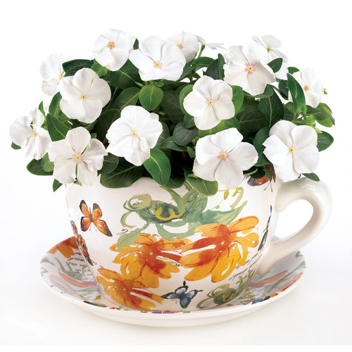 Zingz & Thingz Teacup Butterfly Planter