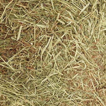 Oxbow Western Timothy Hay Dry Small Animal Food, 25 lbs.